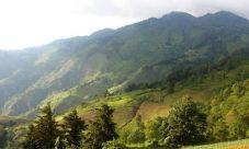 Conociendo el Cerro El Pital