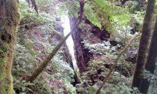 Piedra Rajada (El meteorito de El Pital)