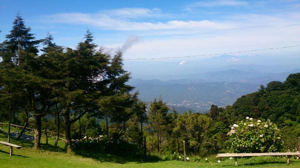 Flora y fauna en el Cerro El Pital